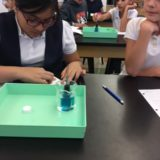 "A Few Pictures from the ""Lab Monday"" Experiment on Mystery Solutions"